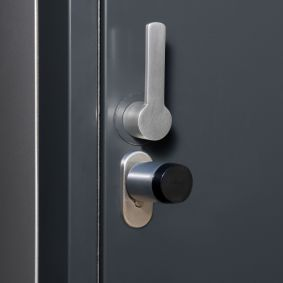 Optional: Electrical profile cylinder lock